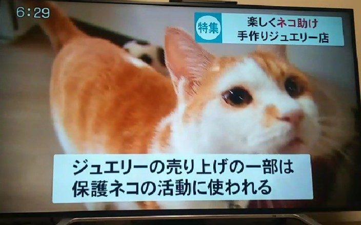 TKUライブニュースで紹介