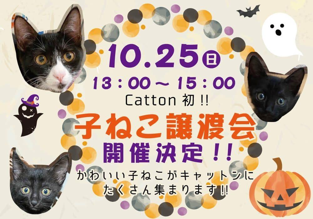 Catton2周年譲渡会