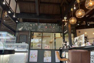キャットン 熊本県荒尾市 保護猫